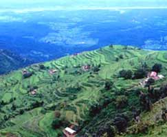Ranikhet Vacation Package